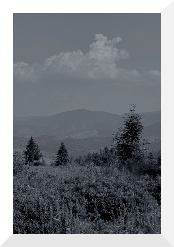 "photo ""Beskid Żywiecki"" tags: landscape, black&white,"