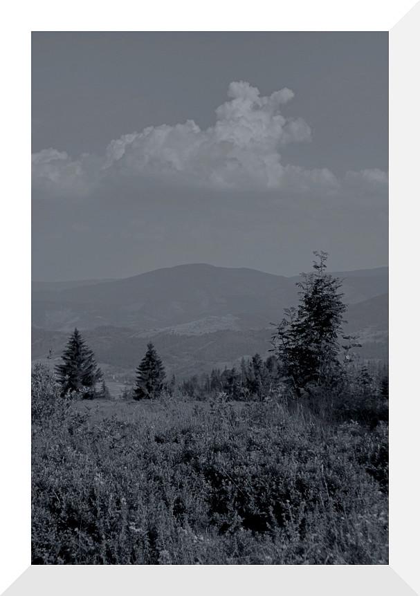 """фото """"Beskid Żywiecki"""" метки: пейзаж, черно-белые,"""
