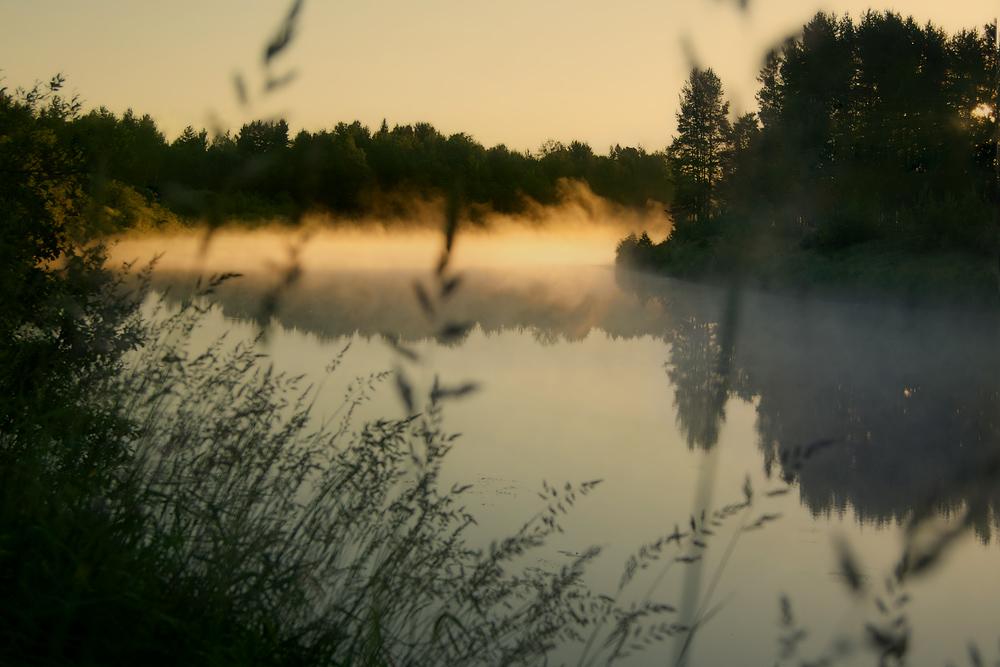 "photo ""***"" tags: landscape, fog, forest, river, sunrise"