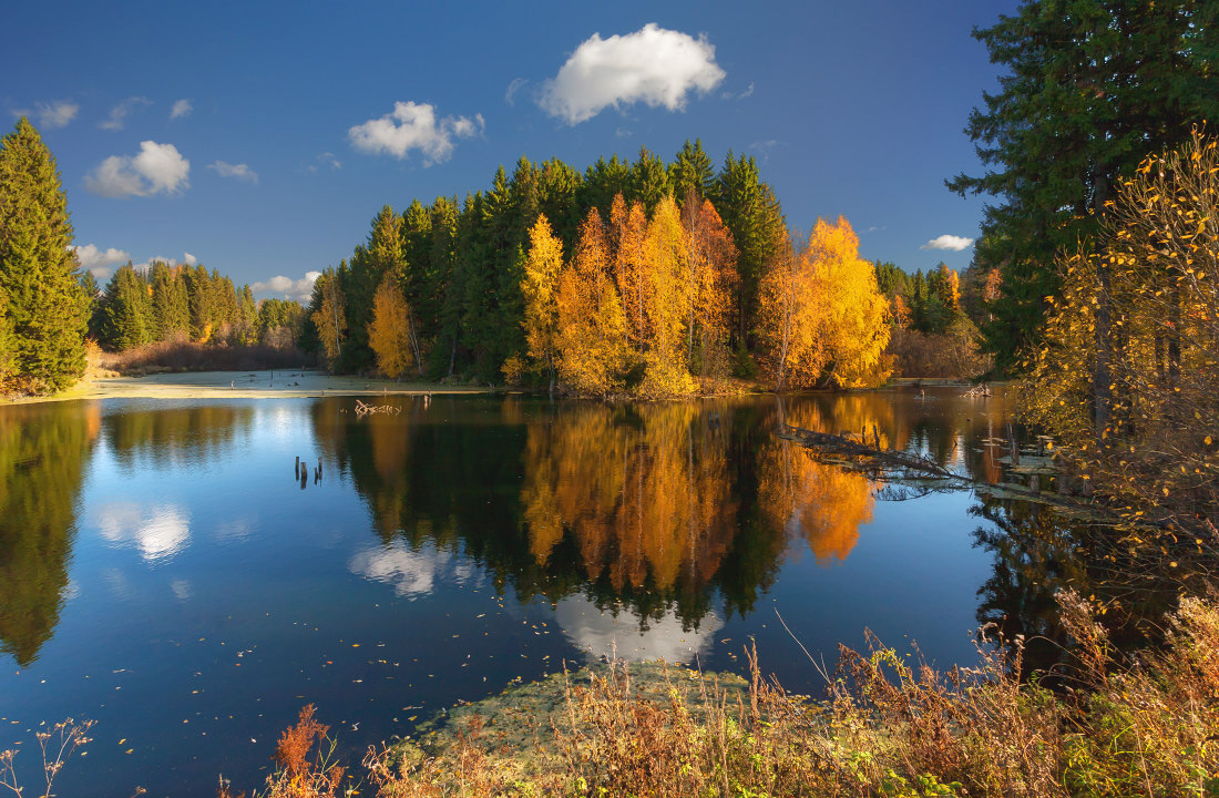"photo ""***"" tags: landscape, autumn, clouds, forest, lake, reflections, tree, water, краски"