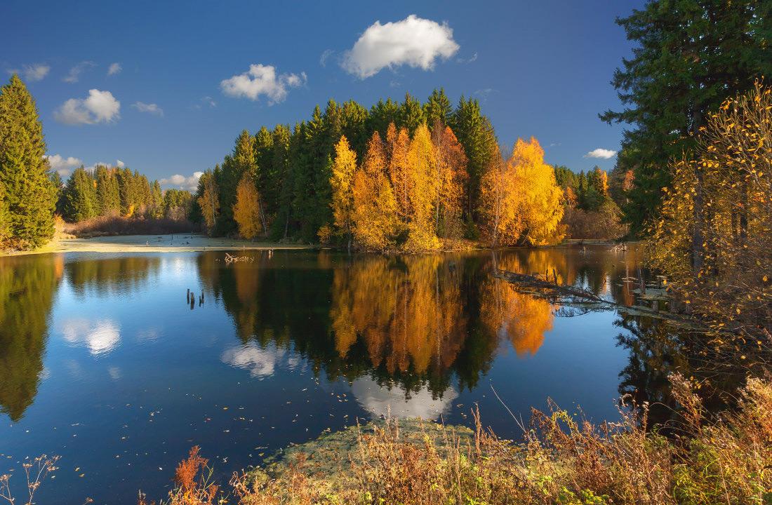 """фото """"Осенние краски с отражениями"""" метки: пейзаж, вода, дерево, краски, лес, облака, озеро, осень, отражения"""