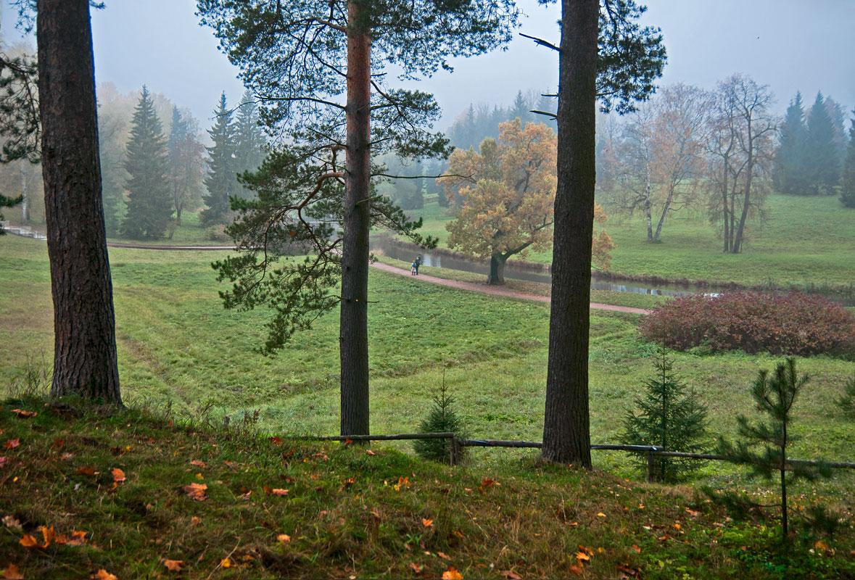 """фото """"***"""" метки: пейзаж, Россия, Санкт-Петербург, осень"""