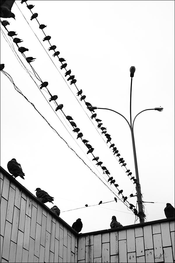 "photo ""***"" tags: street,"