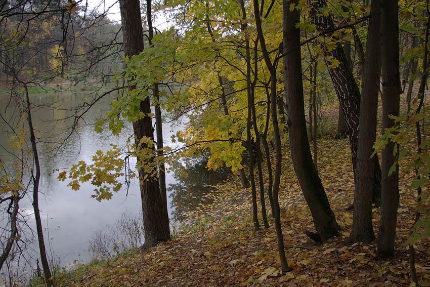 """фото """"Осенняя благодать."""" метки: пейзаж, город, Царицыно, осень, парк"""