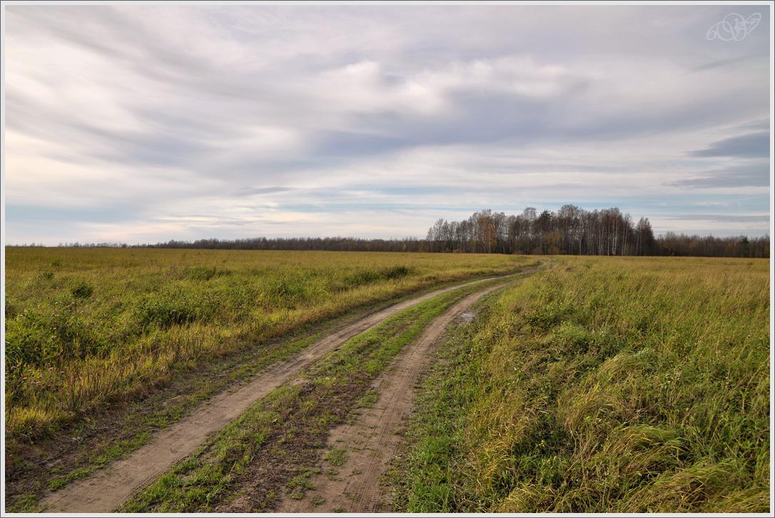 """фото """"Ветер дальних дорог"""" метки: пейзаж, дорога, осень"""