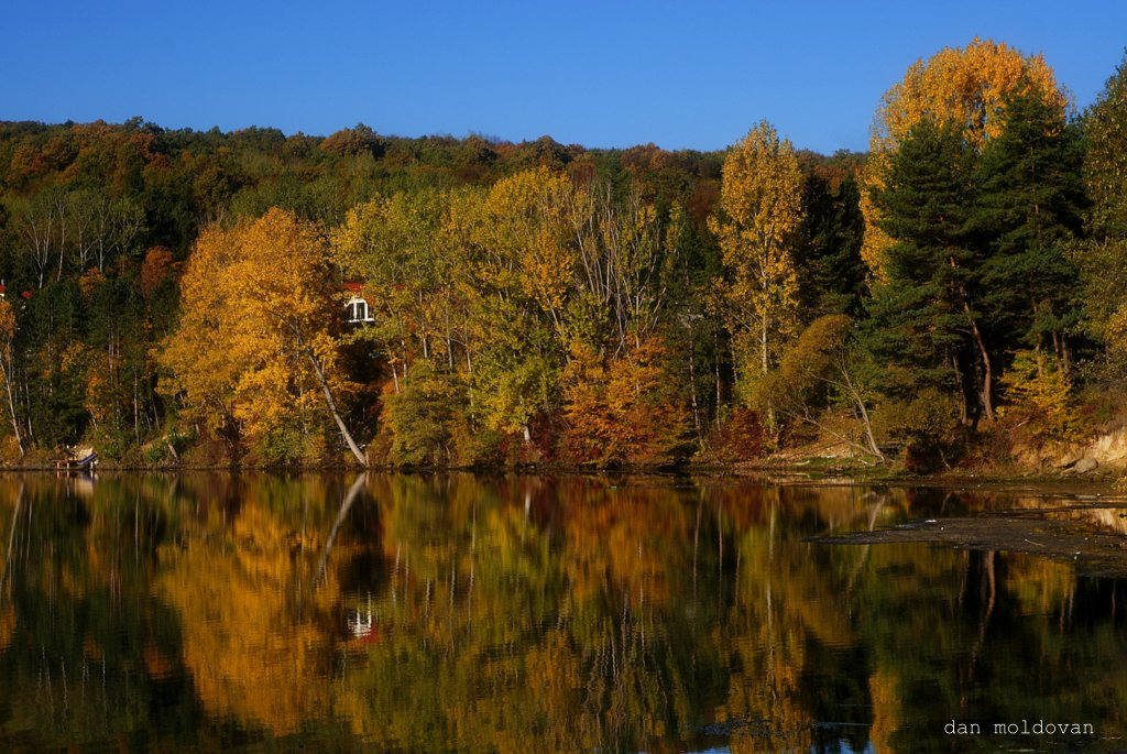 "photo ""oglinda toamnei"" tags: landscape, autumn, forest, lumina, mountains, water"
