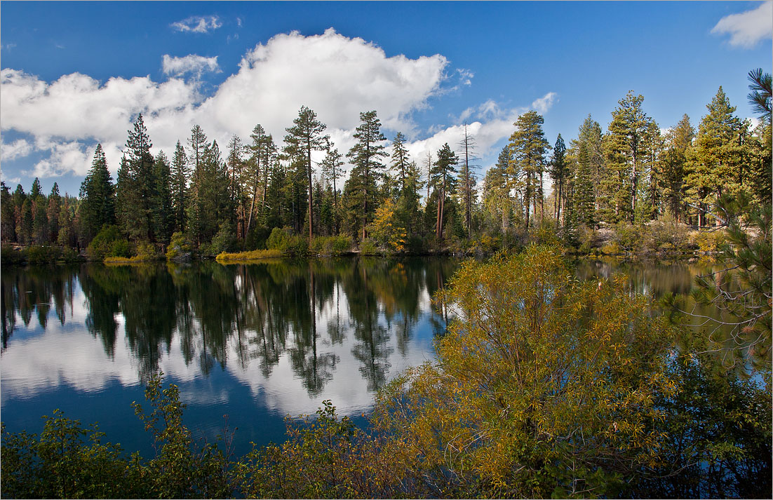 """фото """"Ранняя осень"""" метки: пейзаж, вода, лес, осень"""