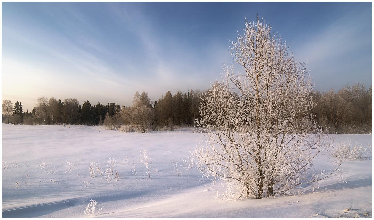 """фото """"Гой ты, Русь моя родная..."""" метки: пейзаж, природа, зима, лес, небо, облака"""