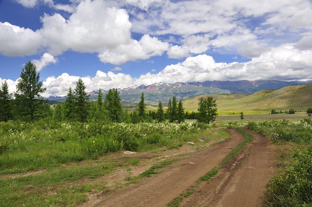 """фото """"Алтай. Курайская степь"""" метки: пейзаж, путешествия, природа, Алтай, горы, степь"""