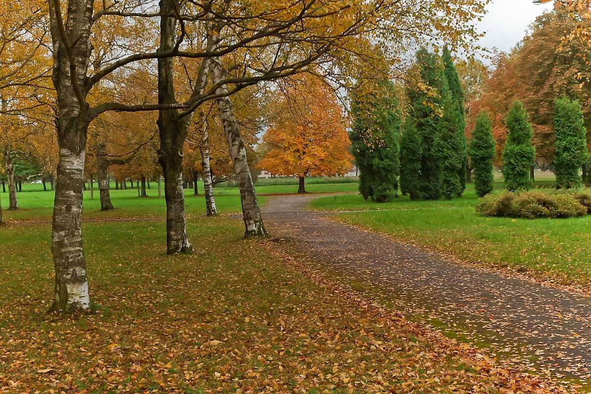 "фото ""Осенняя грусть..."" метки: пейзаж, город, осень"