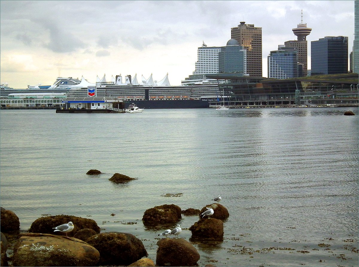 "photo ""Port landscape with seagulls"" tags: landscape, travel, nature, Canada, Vancouver"