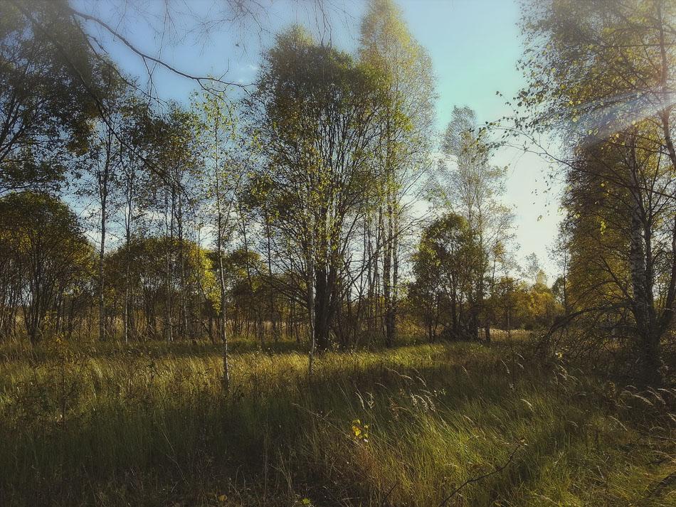 "фото ""тёплый сентябрь"" метки: пейзаж,"