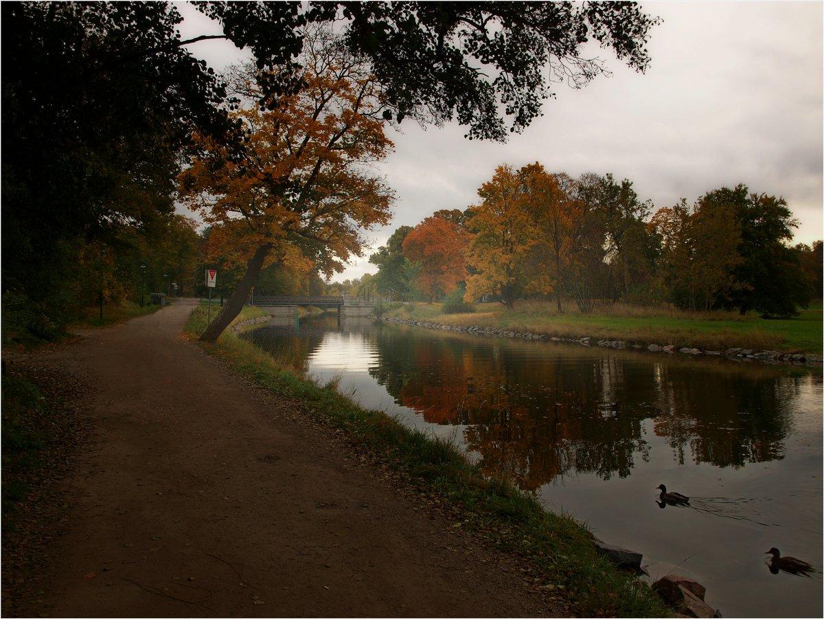"фото ""Autumn in Sweden"" метки: пейзаж,"