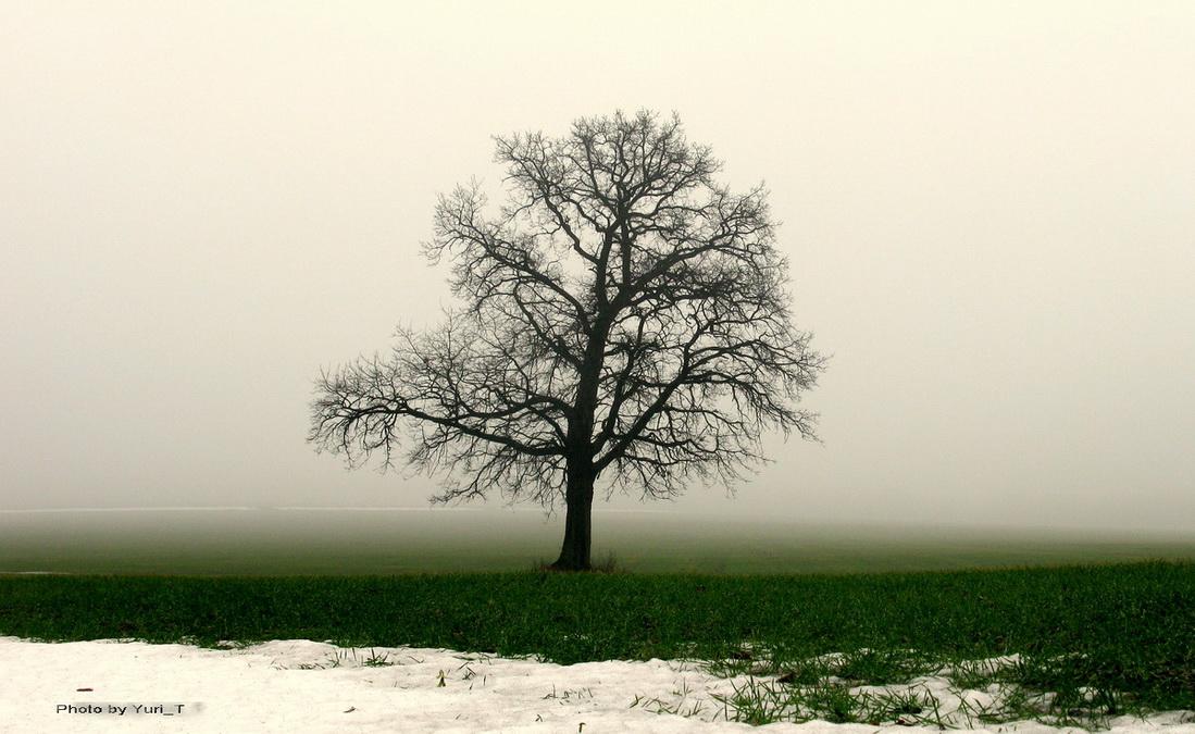 """фото """"Тепло и холод"""" метки: пейзаж,"""