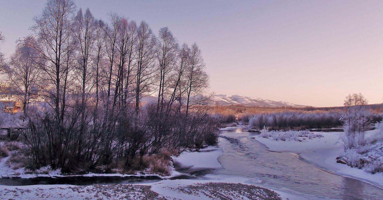 """фото """"Зимняя."""" метки: пейзаж, вода, дерево, лес"""