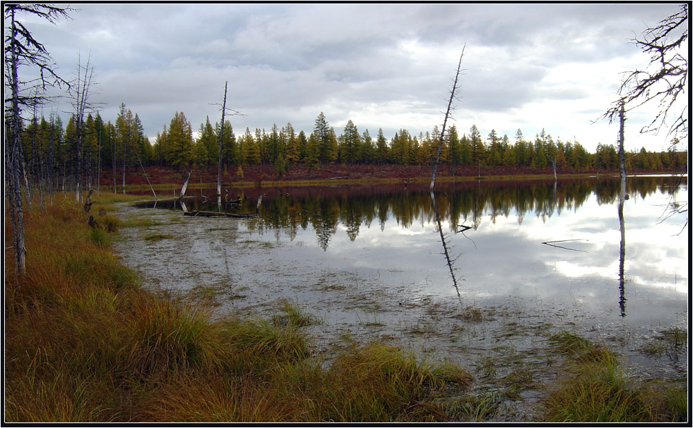"""фото """"Осення тишина"""" метки: пейзаж,"""