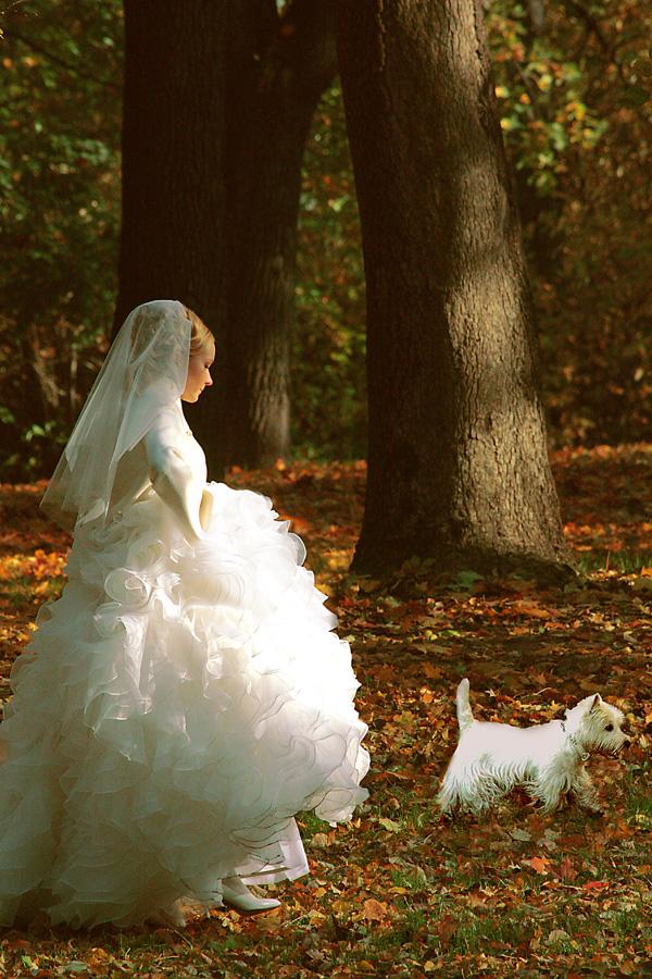 """фото """"***"""" метки: портрет, свадьба"""
