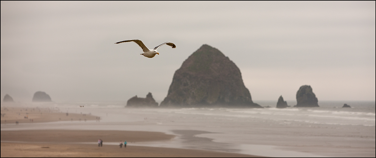"фото ""Лики Океана"" метки: пейзаж, Северная Америка"