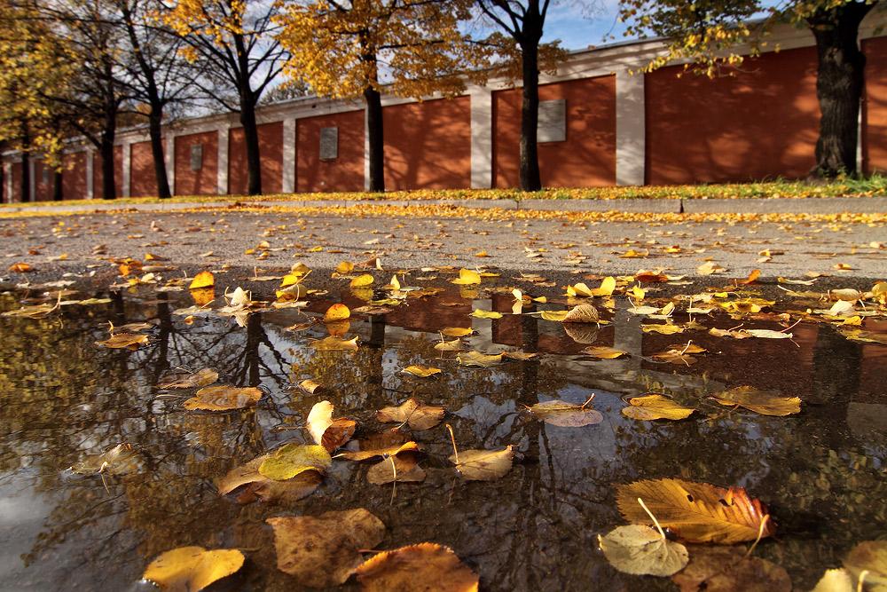 """фото """"Близкая осень"""" метки: пейзаж,"""