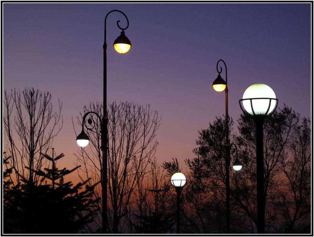 """фото """"Ночные спутники"""" метки: город, ночь, фонарь"""