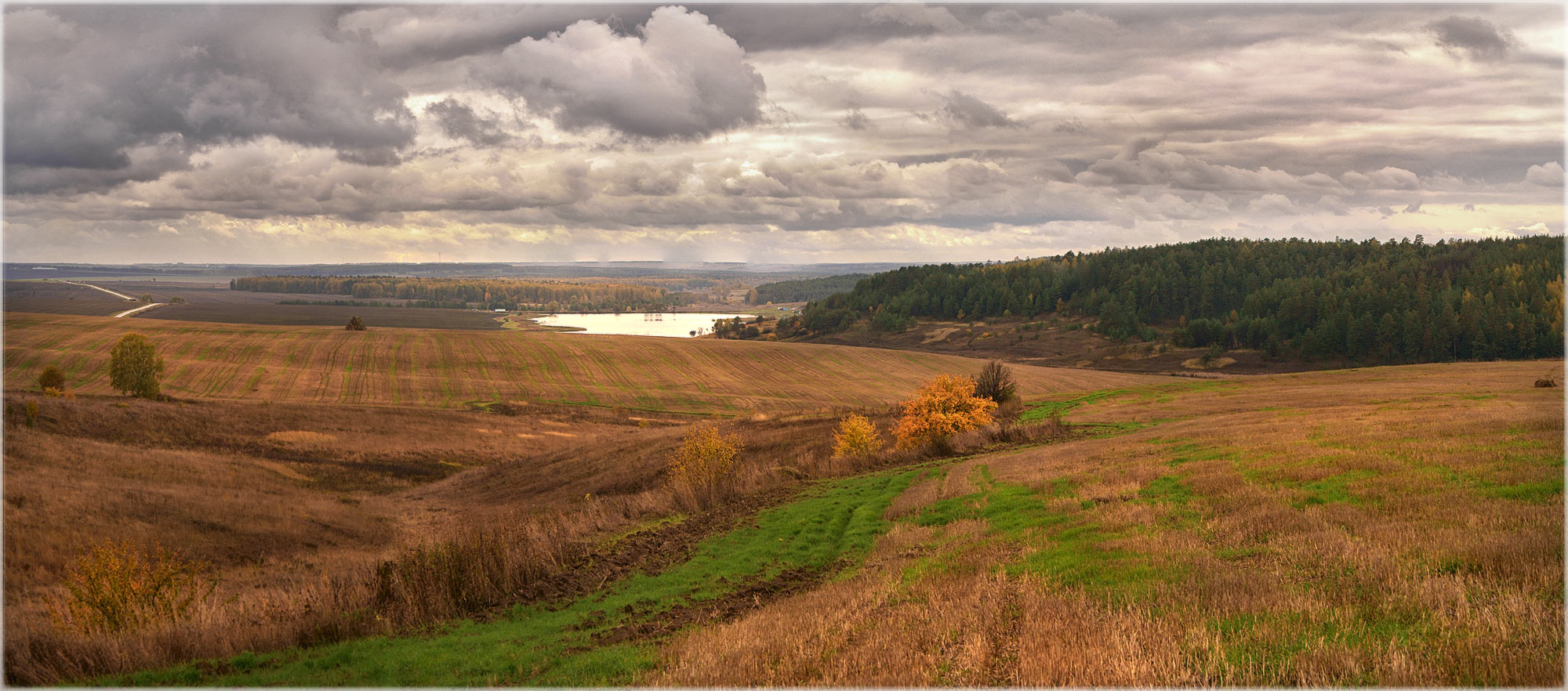 "photo ""***"" tags: landscape, panoramic, nature, autumn, field, forest, просторы"