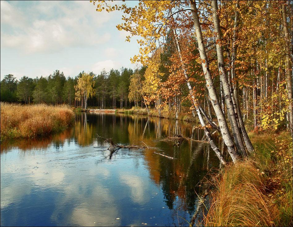 """фото """"autumn"""" метки: пейзаж,"""