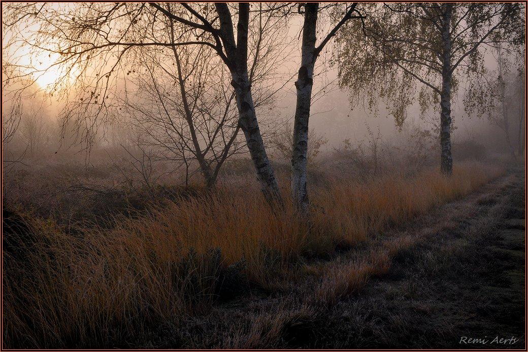 """фото """"***"""" метки: пейзаж, природа, рассвет"""
