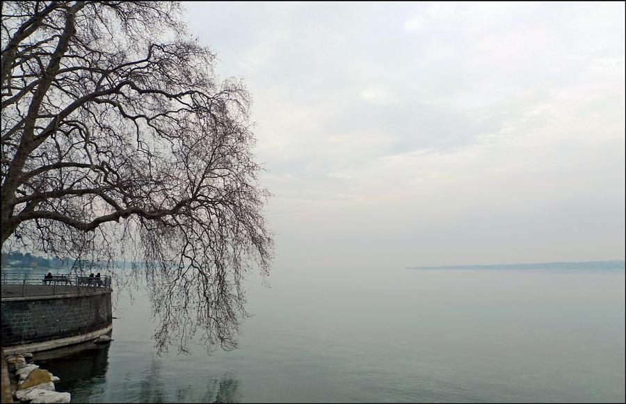 """фото """"Утро туманное"""" метки: пейзаж,"""
