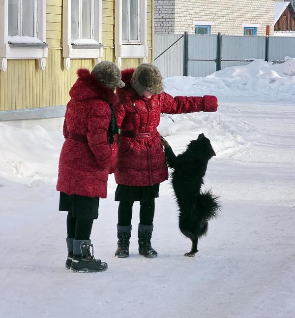 """фото """"Сестрички"""" метки: жанр, репортаж, дети, животные, зима"""