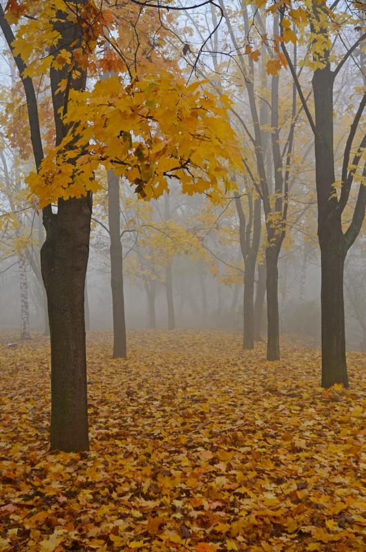 """фото """"Осенняя пора"""" метки: пейзаж,"""