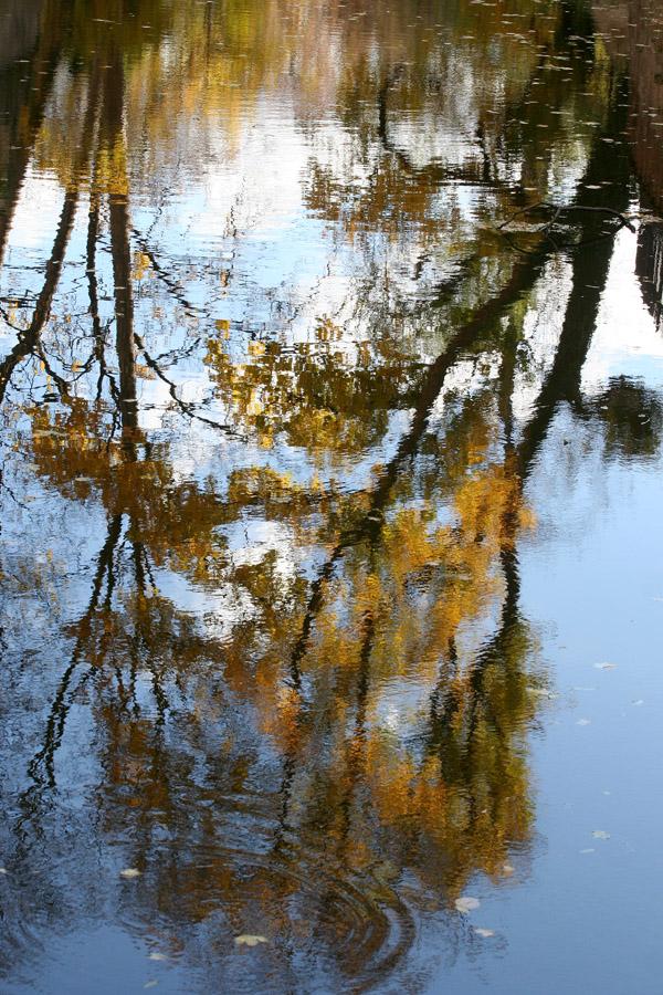 """фото """"отражения"""" метки: пейзаж, природа,"""