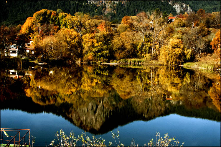 """photo """"reflection"""" tags: landscape, genre, misc.,"""