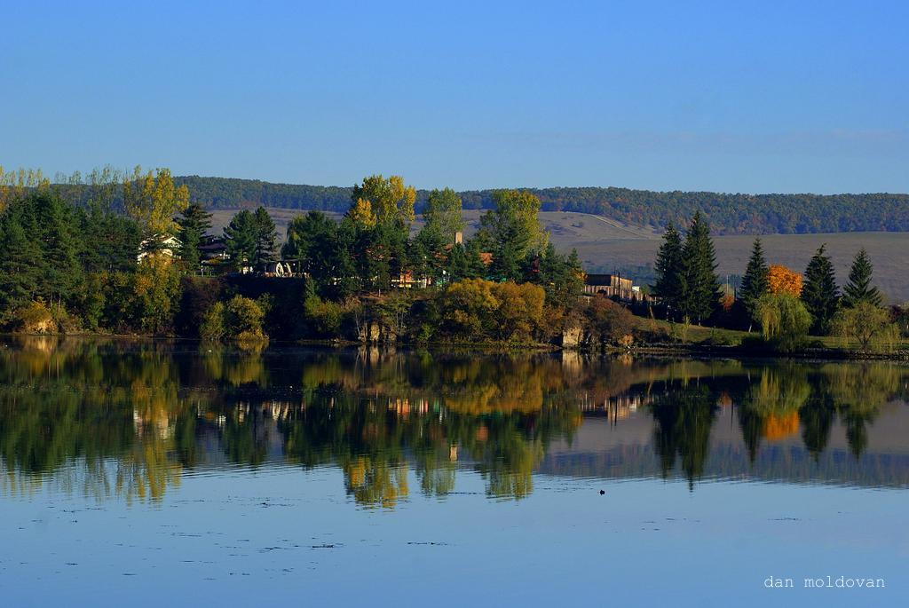 """фото """"*"""" метки: пейзаж, вода, лес, осень"""