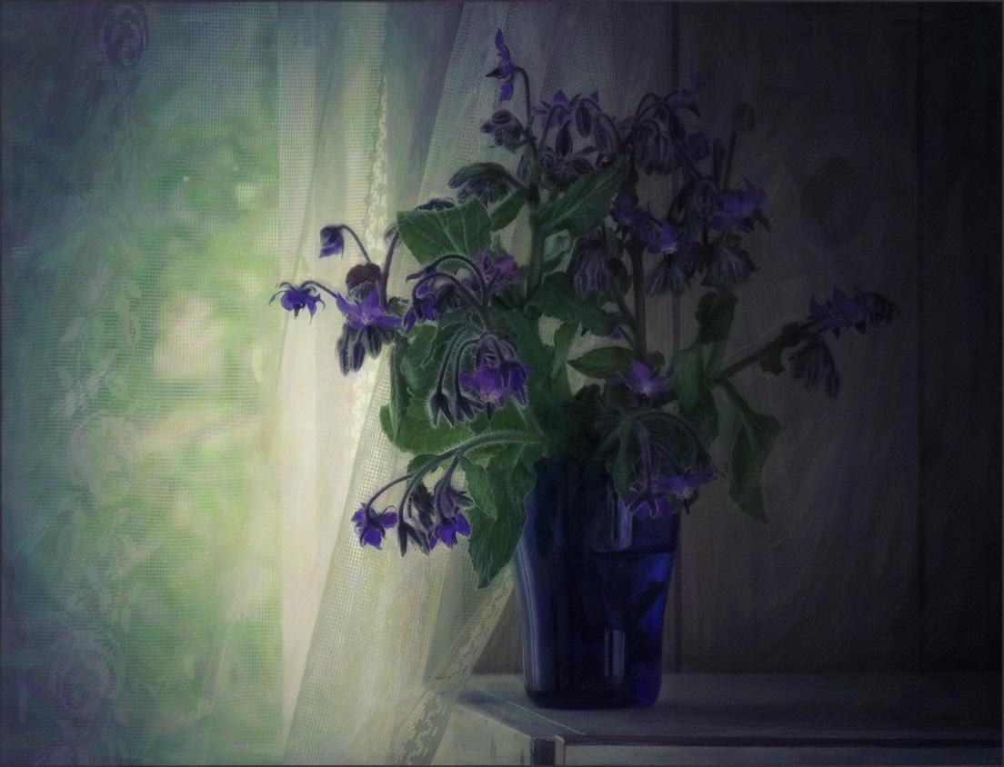 """photo """"***"""" tags: still life, flowers, light, summer"""