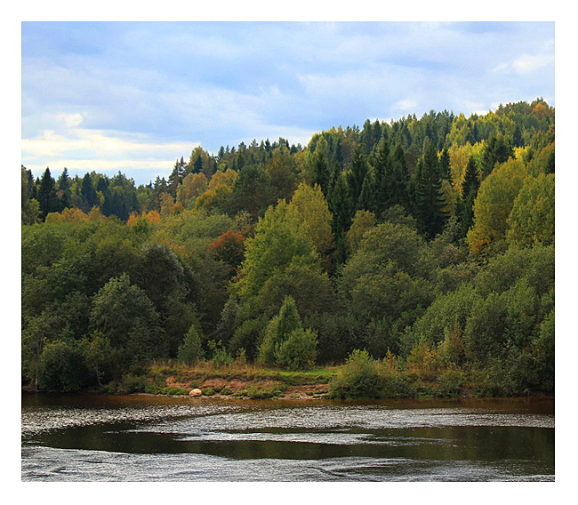 "photo ""Svir River"" tags: landscape, travel, autumn, forest, river, water, свирь"