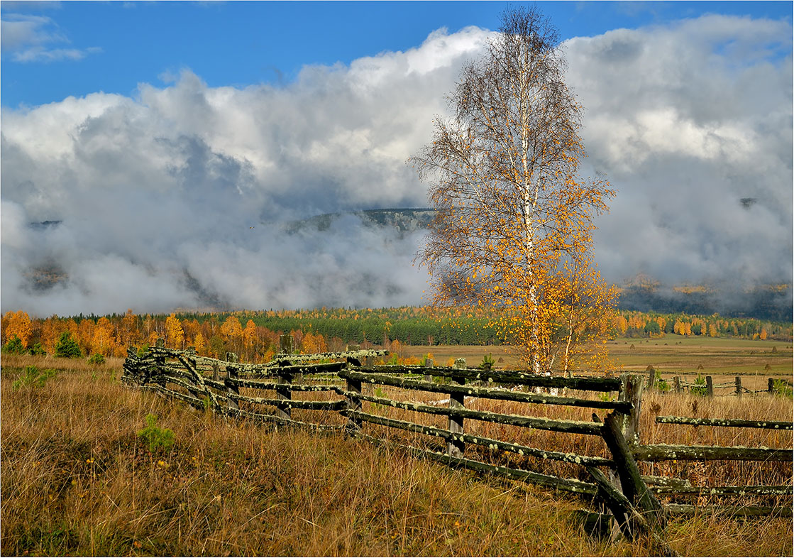 "photo ""***"" tags: landscape, travel, nature, autumn, clouds, forest, meadow, morning, september, village, заборы, туманы"