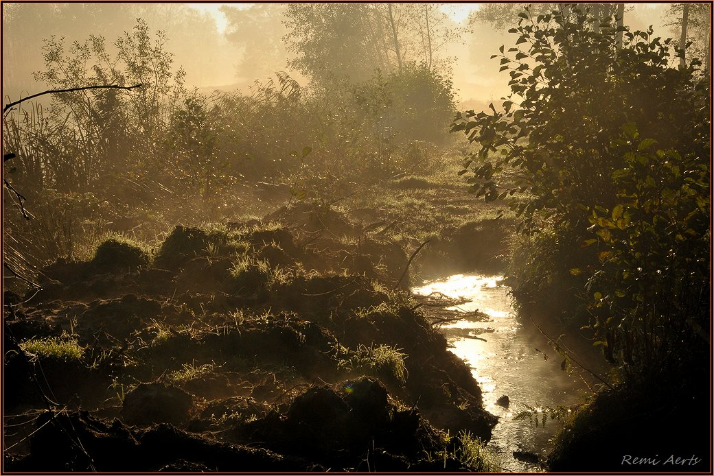 """фото """"***"""" метки: пейзаж, природа, осень, рассвет, туман"""