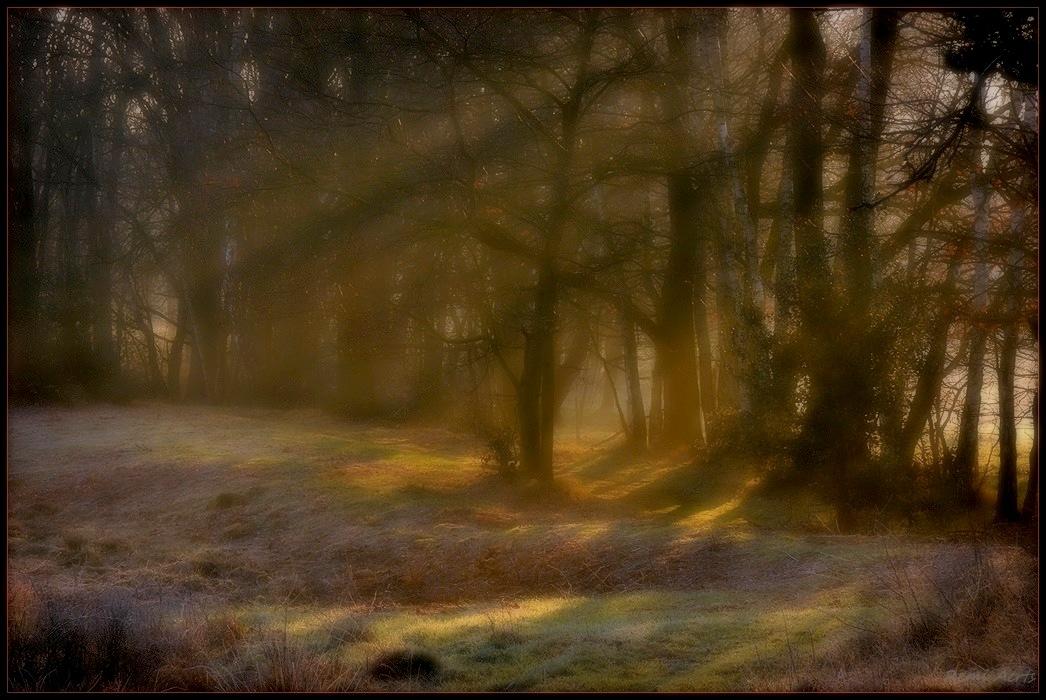 "фото ""***"" метки: пейзаж, природа, рассвет, туман"
