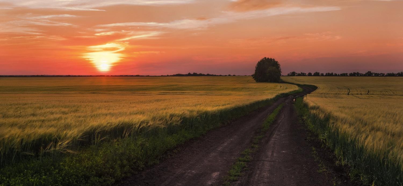 """фото """"Вечерняя дорога"""" метки: пейзаж,"""