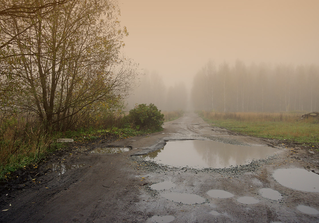 "photo ""***"" tags: landscape, autumn, fog, forest, road"