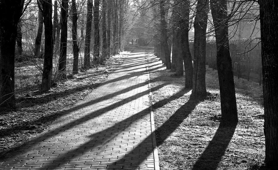 """фото """"Утренний, свет и тени"""" метки: ,"""