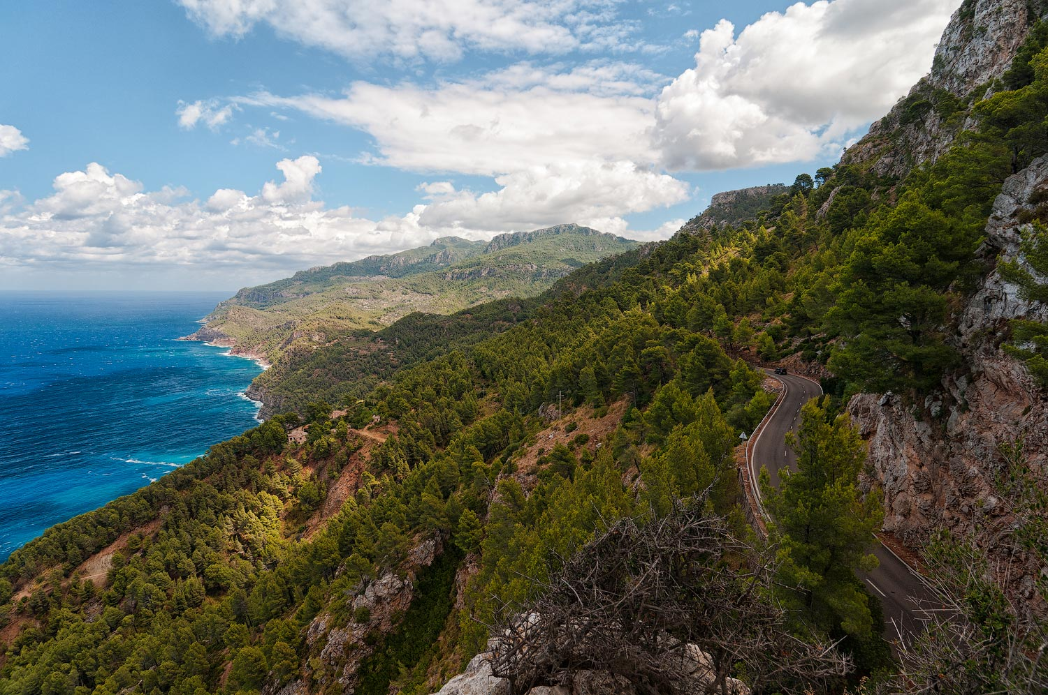 "photo ""***"" tags: landscape, travel, Europe, Majorca, Spain, clouds, forest, summer, water"