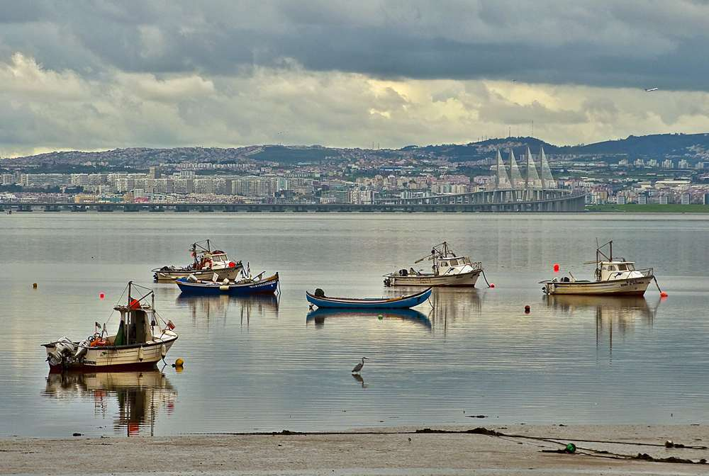 "photo ""River Tagus Estuary"" tags: landscape, panoramic, city, Europe, Portugal, Tagus, Tejo., birds, boat, estuary, river, water"