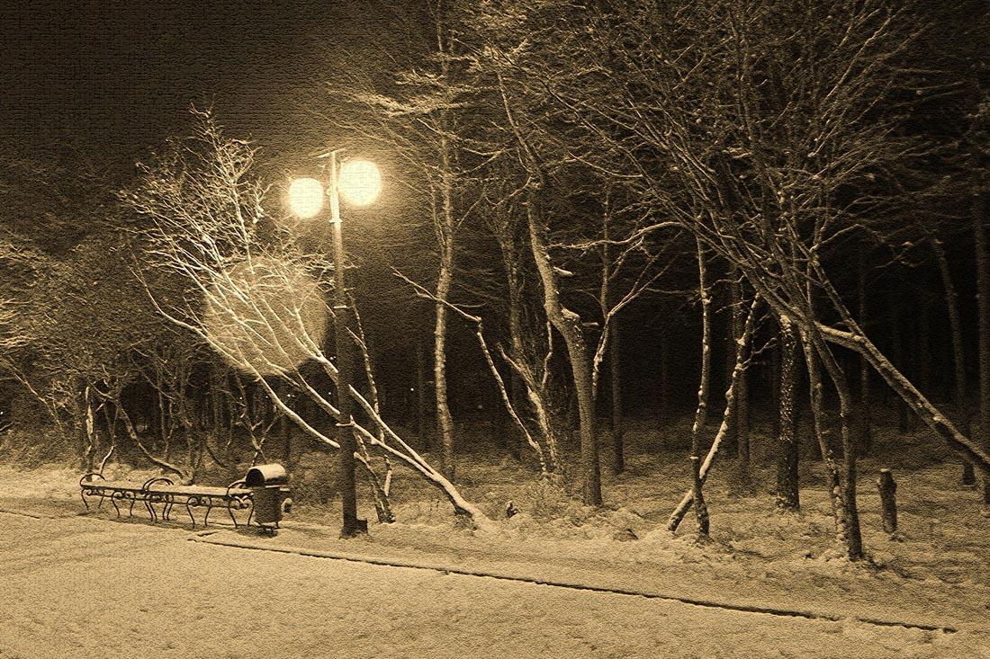 "photo ""***"" tags: old-time, park, деревья, фонарь."