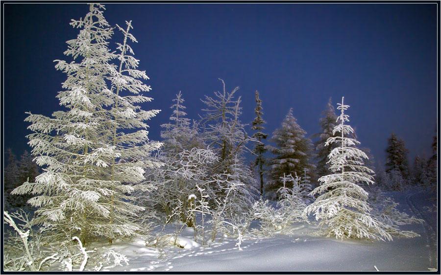 """фото """"Зимний вечер"""" метки: пейзаж, Якутия, вечер, зима, мороз, тайга"""