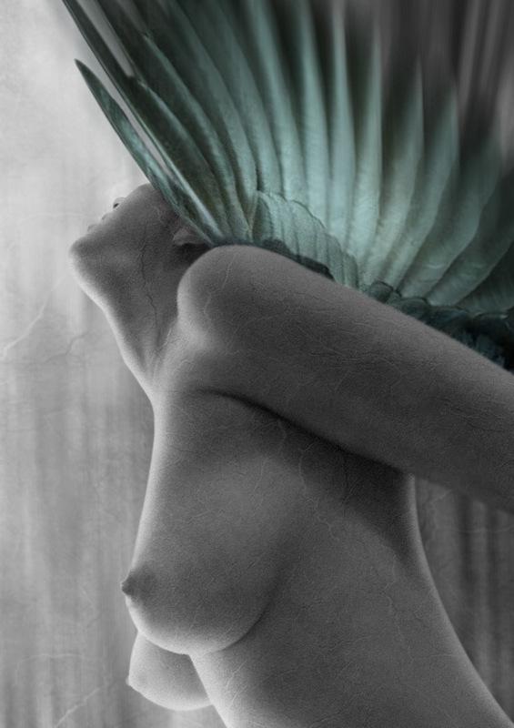 "фото ""Matter of... soul"" метки: ню, фотомонтаж, Conceptual..."