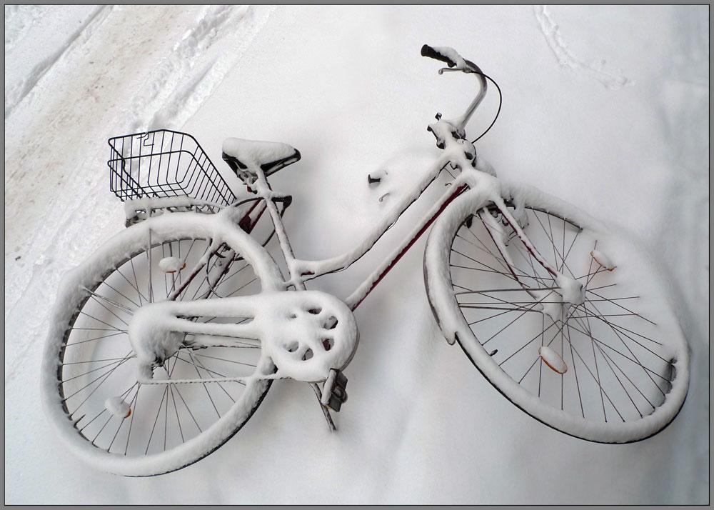 """фото """"Первый снег"""" метки: разное,"""
