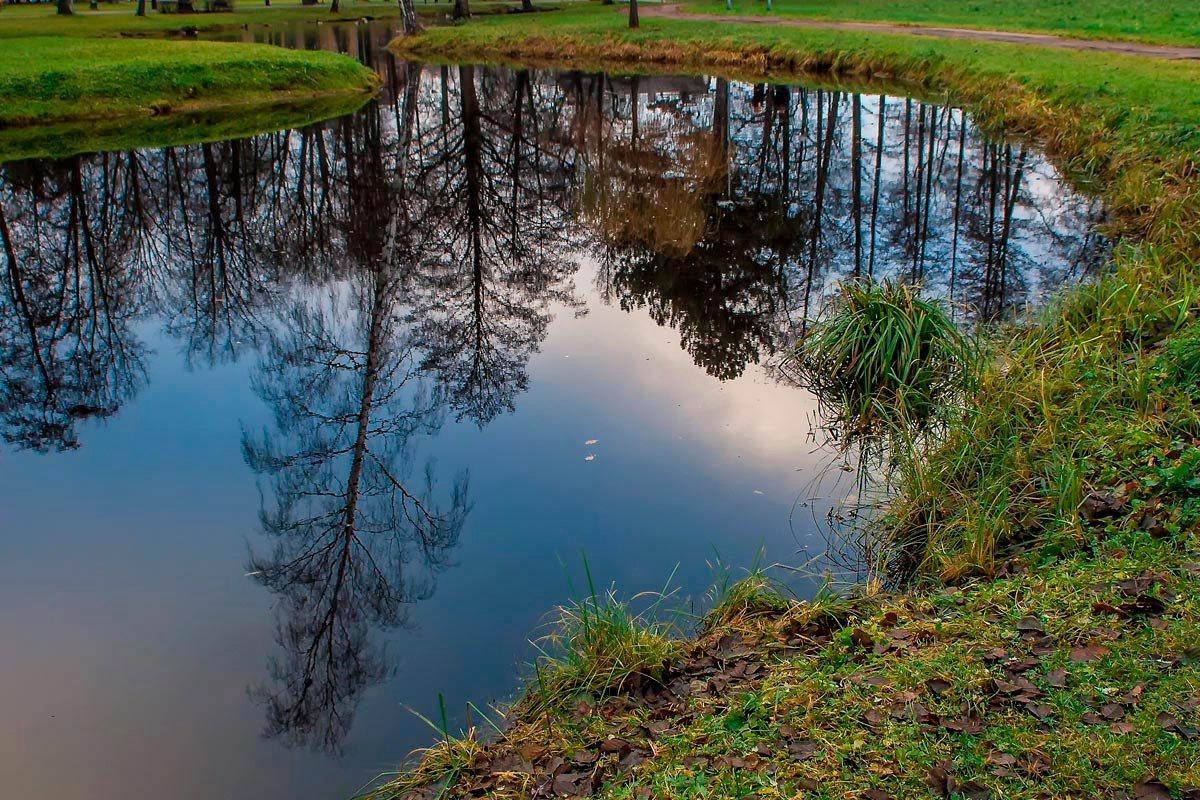 """фото """"Осенние отражения..."""" метки: пейзаж, город, вода, осень, отражения"""