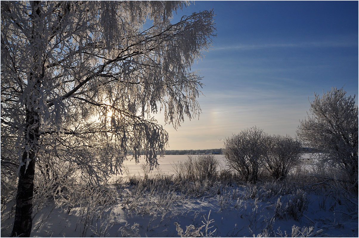 "photo ""***"" tags: landscape, nature, birches, forest, hoarfrost, morning, sunrise, winter"
