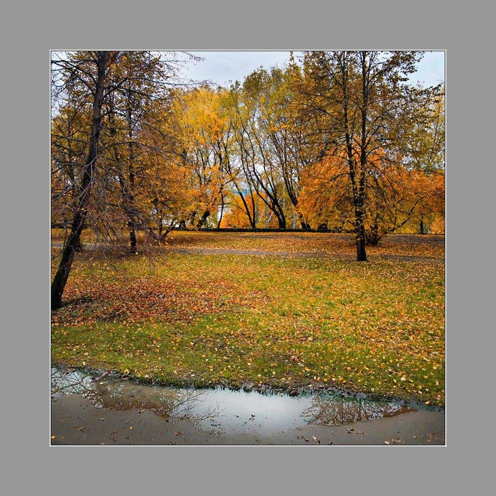 """фото """"Осенний сад"""" метки: пейзаж, природа,"""